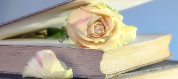 rosa-libro