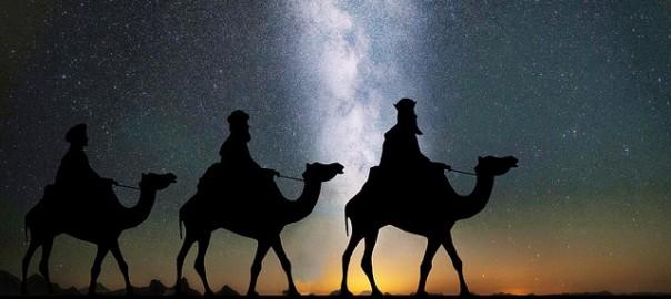camels-1150075_640